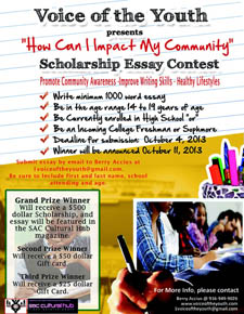 fun essay scholarships 2013