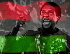 Did you know about Stokely Carmichael?