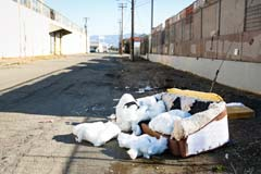 City Tackles Illegal Dumping of Junk and Debris