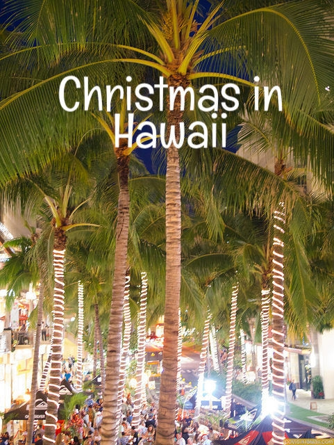 What's Christmas like in Hawaii? 2019 Edition