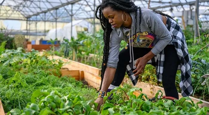 Farming for Change: Black Womxn Farmers Fight the Pandemic With a Food Revolution