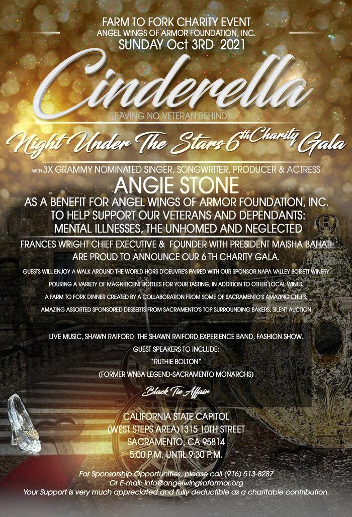 Cinderella Night Under The Stars 6th Charity Gala